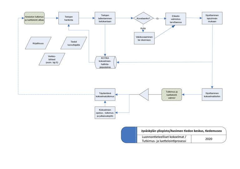 Tiedemuseon luonnontieteellisen kokoelman luettelointiprosessin prosessikuvaus