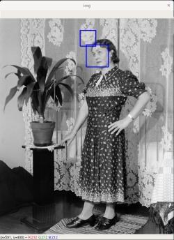Naisen muotokuva, jossa tunnistus on tunnistanut myös verhon kuviota kasvoiksi